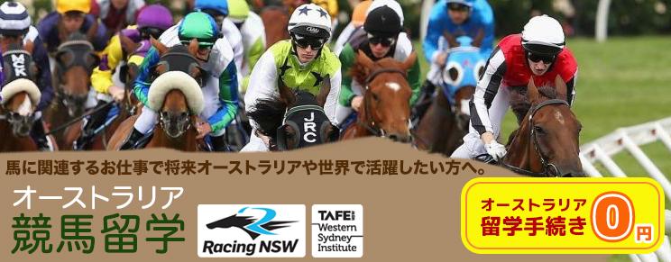 馬に関するお仕事で将来オーストラリアや世界で活躍!