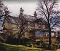 Tasmanian College of English