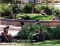 University of Canberra School of Language and International Ed.